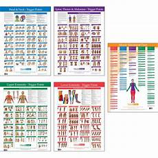Travell Trigger Point Chart Myofascial Syndrome Trigger Points Chart Google