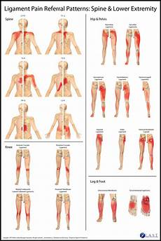 Referred Back Chart Pin On