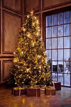 Professional Christmas Tree Lights Holiday Decorating Service Christmas Light Installation
