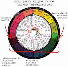 12 Cell Salts Chart Cell Tissue Salts Universal Truth School