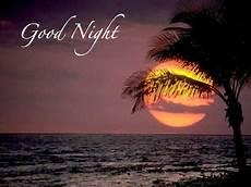 dania ji sms shayari good night sms