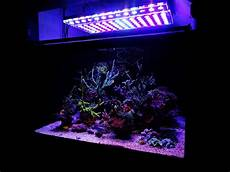 Best Aquarium Lights Aquarium Led Lighting 2017 2018 Reef Aquarium Led