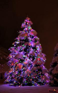 Professional Christmas Tree Lights Moon Light Holiday Lighting Christmas