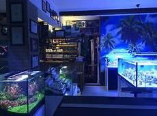 vasche aperte per acquari negozio acquario club