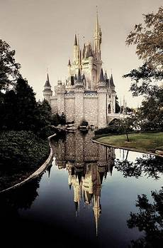 disney world wallpaper iphone 7 plus magical reflection for my grandgirls disney