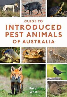 Guide To Introduced Pest Animals Of Australia Peter West