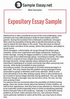 Easy Expository Essay Topics Expository Essay Samples Just The Facts Sample Essay