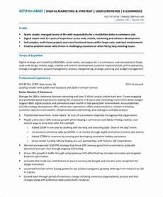 Accomplishment Based Resume E Commerce Director Resume Sample With Images Free