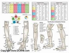 Arm Diagnosis Chart Applied Kinesiology Chart Set