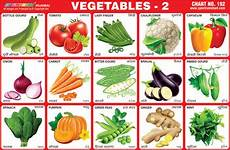 Vegetable Picture Chart Vegetables Stickers Charts Buy Vegetable Learning Chart