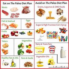 a paleo diet plan that can save your about low carb