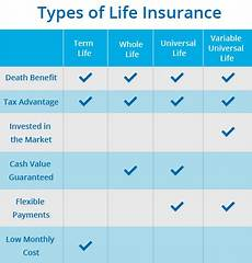 Different Types Of Life Insurance Chart Your Life Insurance Plans Fhk Insurancefhk Insurance