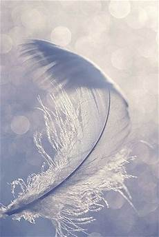 iphone blue feather wallpaper 10 best phone background images on background