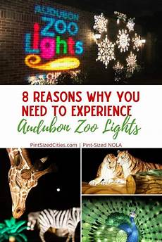 Zoo Lights New Orleans 8 Reasons Why You Need To Experience Audubon Zoo Lights