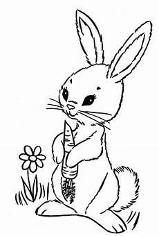 Hase Malvorlagen Lengkap Die Besten 25 Ausmalbild Hase Ideen Auf Hase