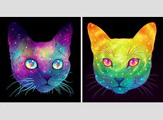 Galactic Cats: Psychedelic Illustrations Merge Cats And