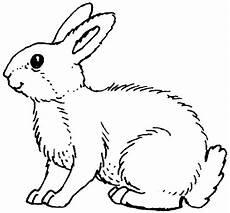 Hase Malvorlagen Lengkap Ausmalbilder Hasen 02 Ausmalbild Hase Malvorlagen Tiere