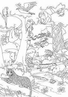 Malvorlagen Urwald Gratis Dschungel Malvorlage Kostenlos Coloring And Malvorlagan