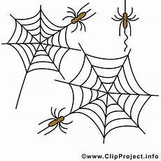 Malvorlagen Spinnen Spinnen Clipart