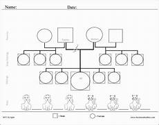 Genogram Template Maker 8 Free Genogram Sampletemplatess Sampletemplatess