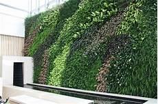 Vertical Green Installation Of Vertical Green Wall Nosql Home