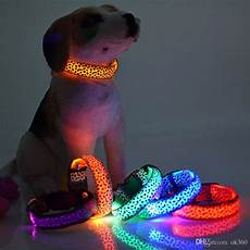 Dog Led Light Best Pet Dog Led Collar Glow Cat Collars