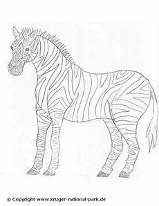 63 best ausmalbilder images on coloring pages