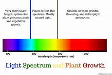 Plant Color Chart Everything You Need To Know About Grow Lights The