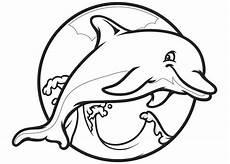 dolphin template animal templates free premium templates
