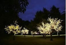 Tree Lights Illuminated Decorative Led Tree By Enchanted Trees