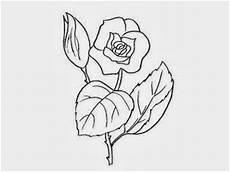fiori da disegnare disegni da colorare di fiori