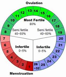 24 Day Menstrual Cycle Chart Top 5 Natural Birth Control Options Healing Cuisine By Elise