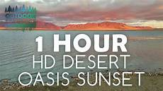 Oasis Hours 1 Hour Hd Desert Oasis Sunset Relaxing Nature Sounds