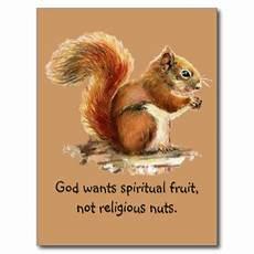 quotes about squirrels quotesgram