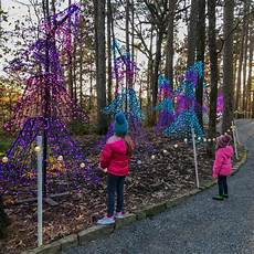 Garvan Woodland Gardens Christmas Lights 2018 Tips For Seeing The Garvan Gardens Christmas Lights The