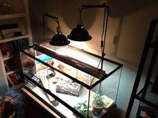 Blue Night Light For Bearded Dragon Lighting Help Please Bearded Dragon Org