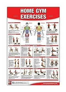 Weight Training Exercises Chart Laminated Poster Home Gym Weight Lifting Exercise Routine