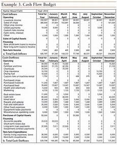Cash Flow Budget Twelve Steps To Cash Flow Budgeting Ag Decision Maker