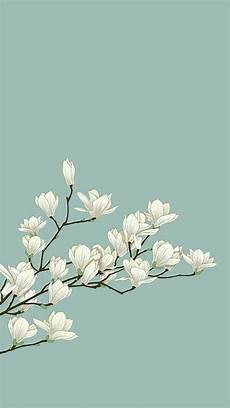 Minimalist Aesthetic Flower Wallpaper by Wallpaper Background And Iphone Image Sfondi Sfondi