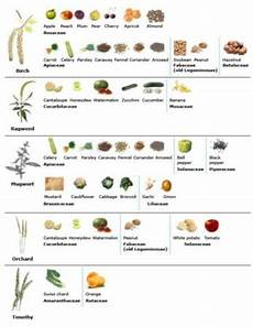 Allergy Syndrome Food Chart Allergy Syndrome Foods List Complete With All Pollen