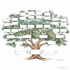 5 Generation Family Tree Chart Family Tree Scrapbook Chart 12x12 Inch 5 6 Generations