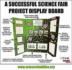 Poster Board Designs Mastering The Project Display Board Science Buddies Blog