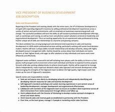 Vice President Of Manufacturing Job Description Business Development Job Description Template 10 Free