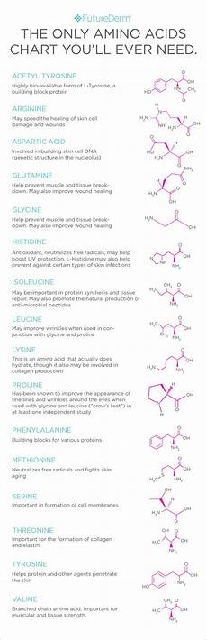 Amino Acid Benefits Chart Do Amino Acids Actually Do Anything In Skin Care Futurederm