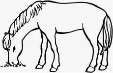 ausmalbilder pferde zum ausdrucken ausmalbilder