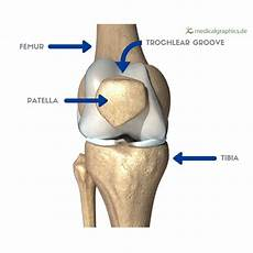 Patella Femoral Syndrome Runner S Knee Part 1 What Is Patellofemoral Syndrome