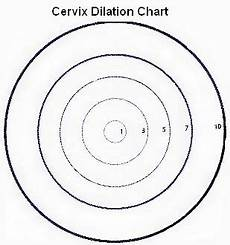 Centimeters Dilated Chart Is Cervix Dilation An Early Sign Of Labor