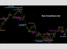 1 Minute Trading System Review   Professional Forex