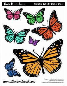 Printable Butterfly Printable Butterflies Tim S Printables