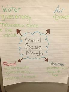 Animal Chart For Kindergarten Animal Basic Needs Second Grade Science Third Grade